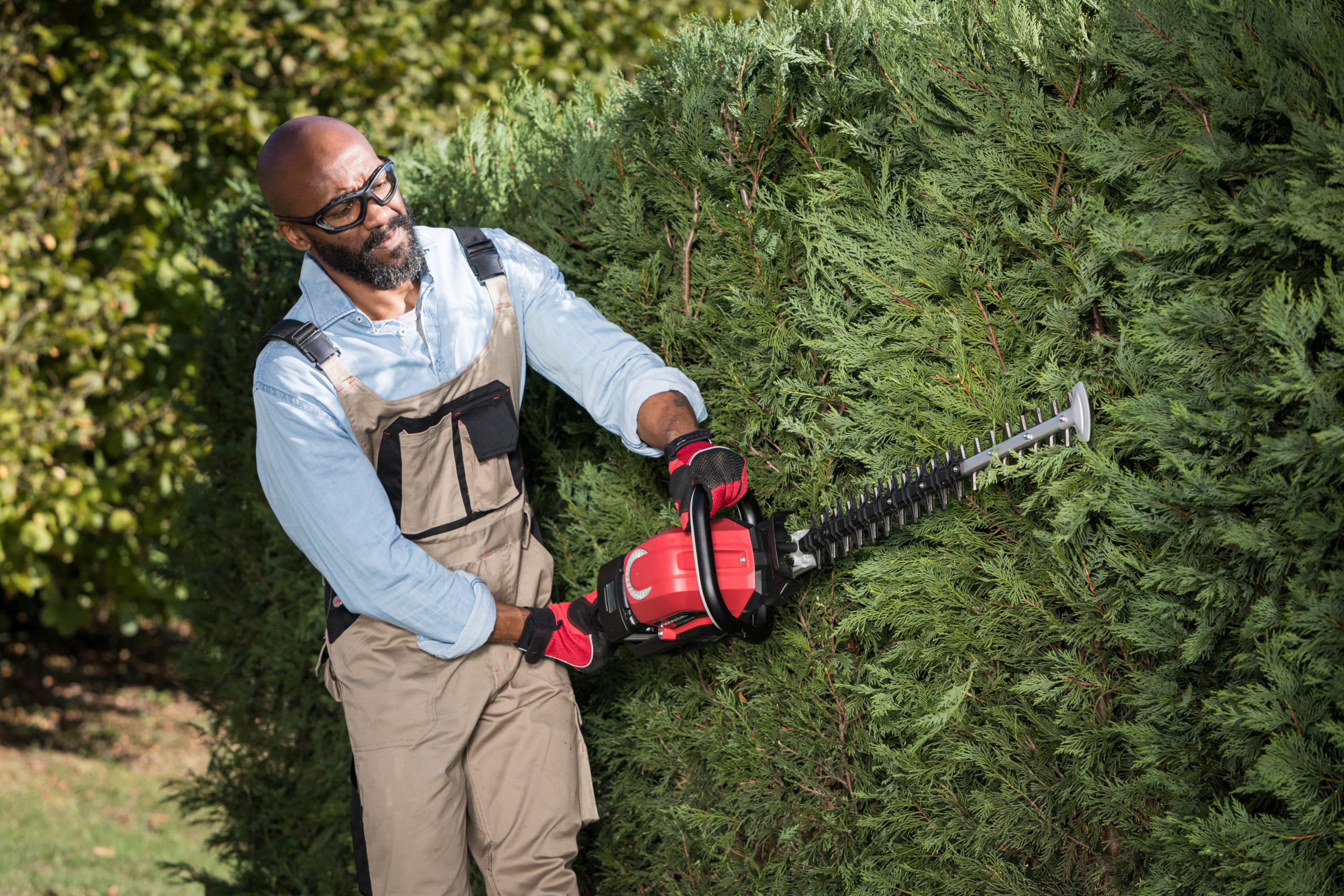 Honda hhh hedgecutter tools